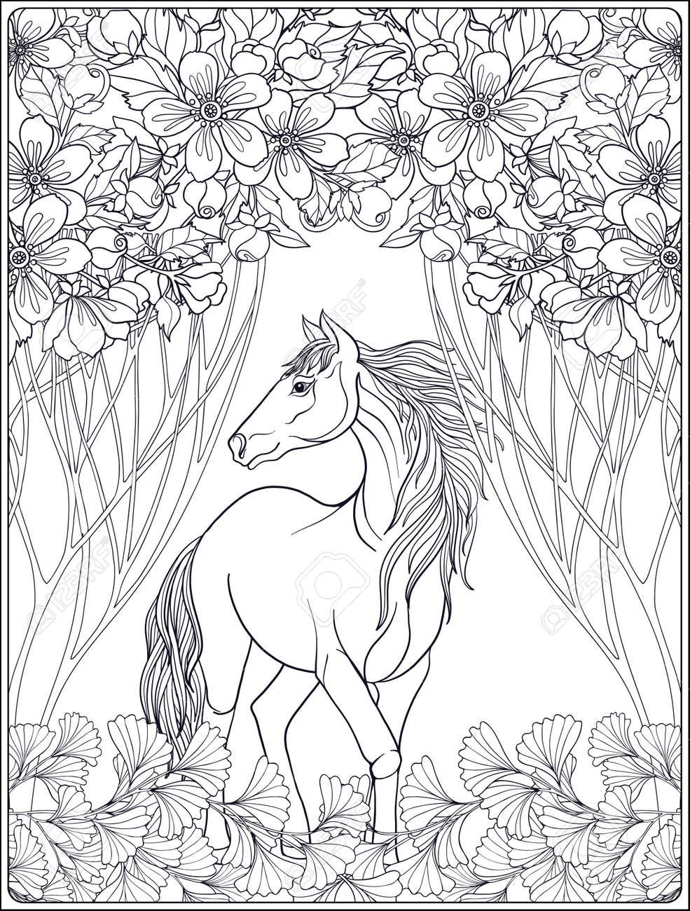 Horse In Garden Vector Illustration Coloring Book For Adult And Older Children Outline