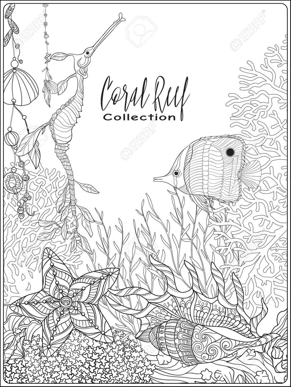 Korallenriff-Sammlung. Korallen, Fische Und Muscheln Auf Der ...