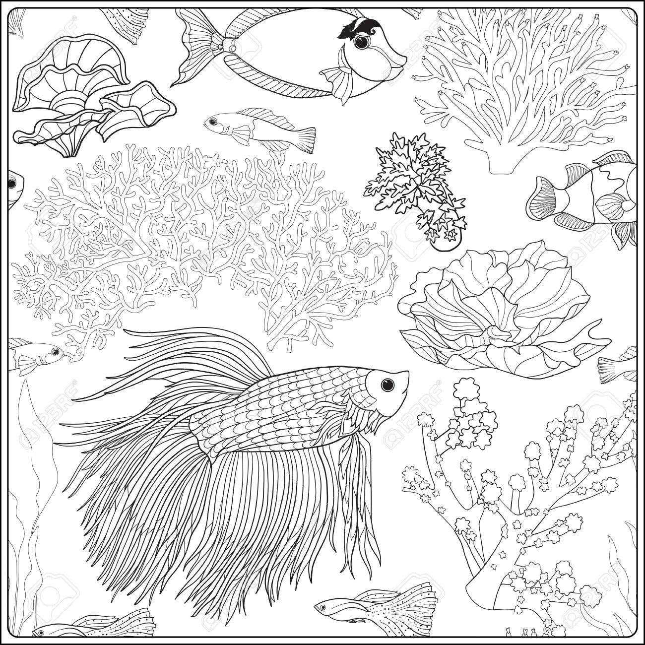 Pattern With Decorative Corals And Sea Or Aquarium Fish. Vector ...