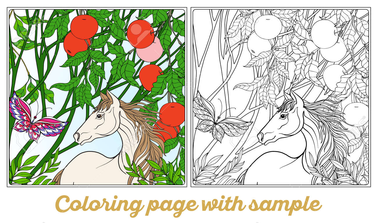 Horse In Garden. Vector Illustration. Coloring Book For Adult ...
