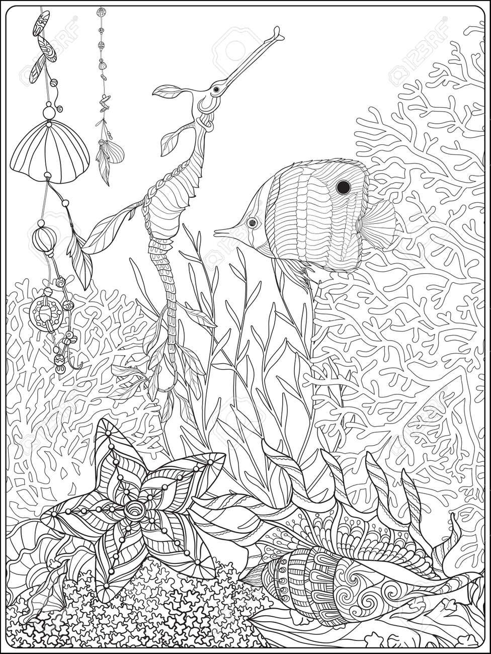 Colección De Los Arrecifes De Coral. Corales, Peces Y Conchas De Mar ...
