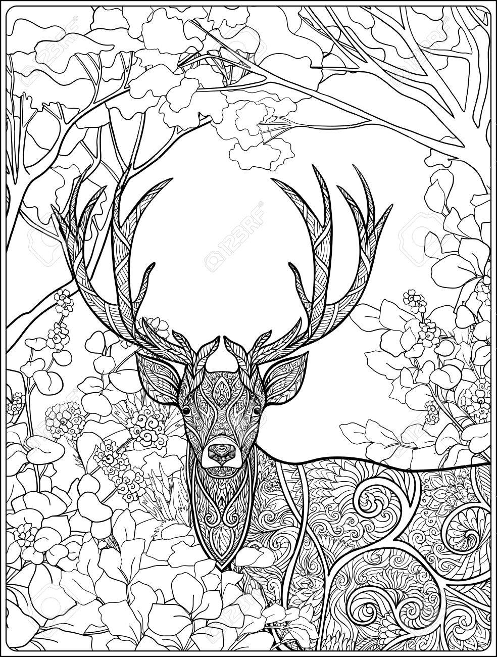 Coloring Page With Deer In Forest. Coloring Book For Adult And Older ...