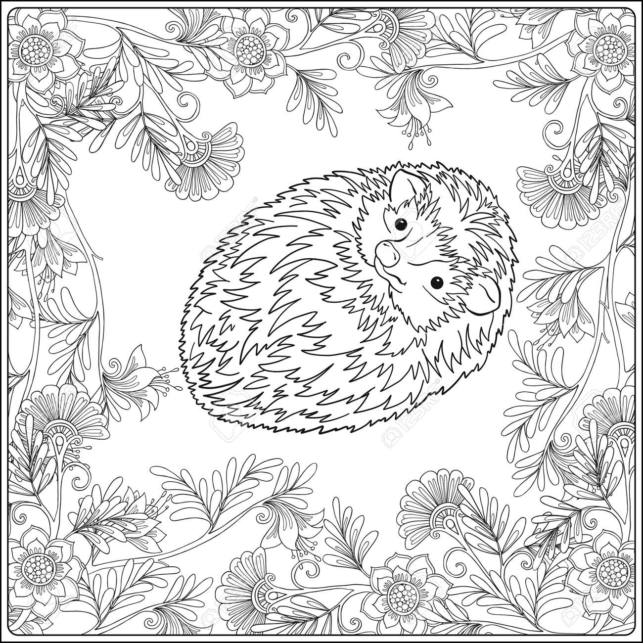 Coloring Page With Lovely Hedgehog In The Garden Book For Adult And Older Children