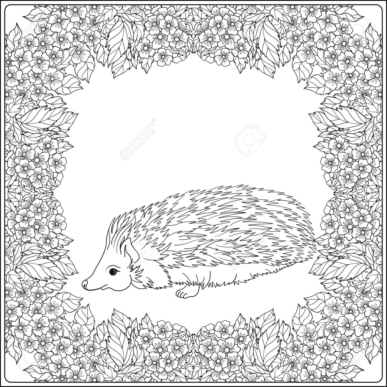 Coloring Page With Lovely Hedgehog In The Garden. Coloring Book ...