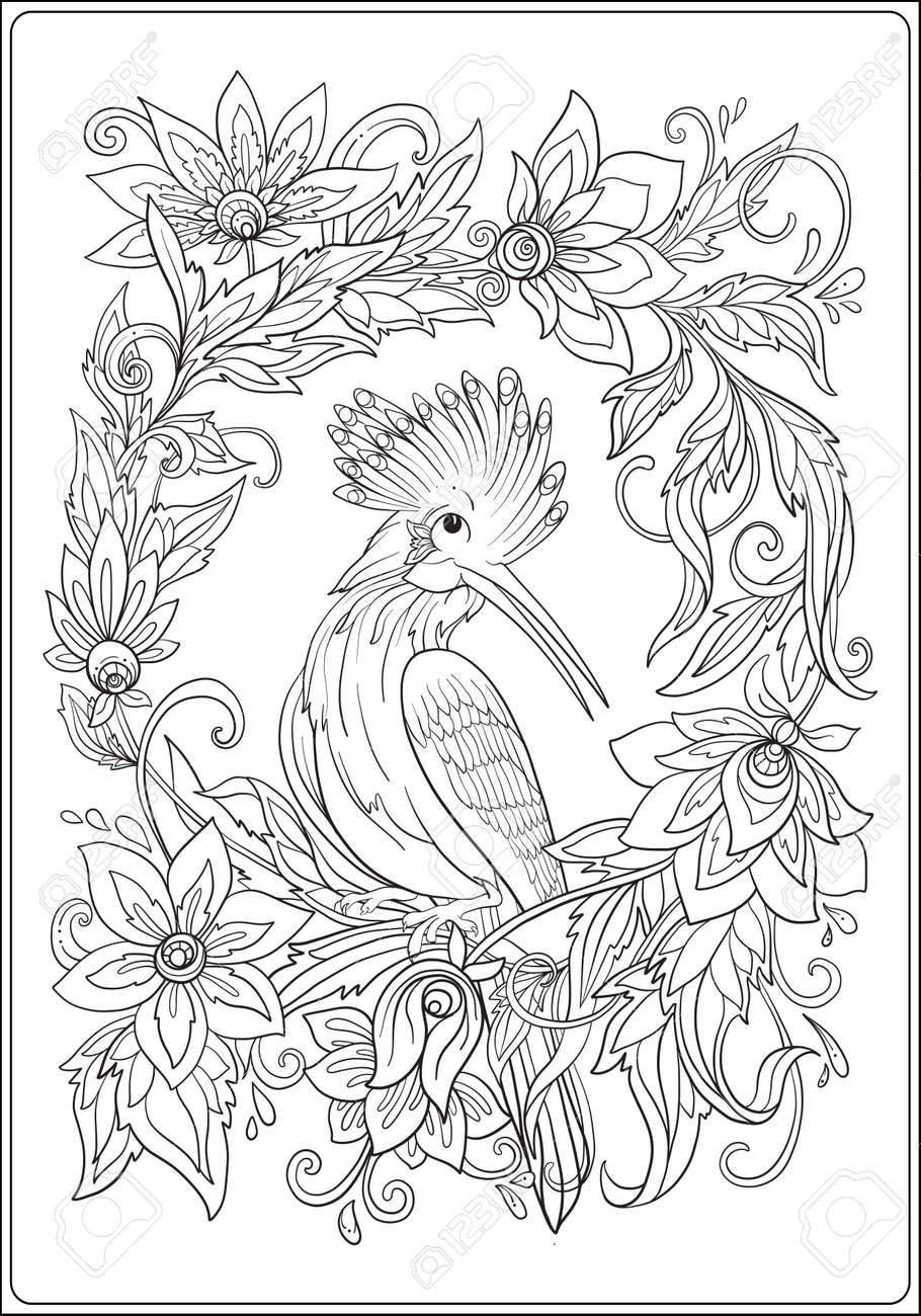 Hoopoe In Garden. Anti Stress Coloring Book For Adult. Outline ...