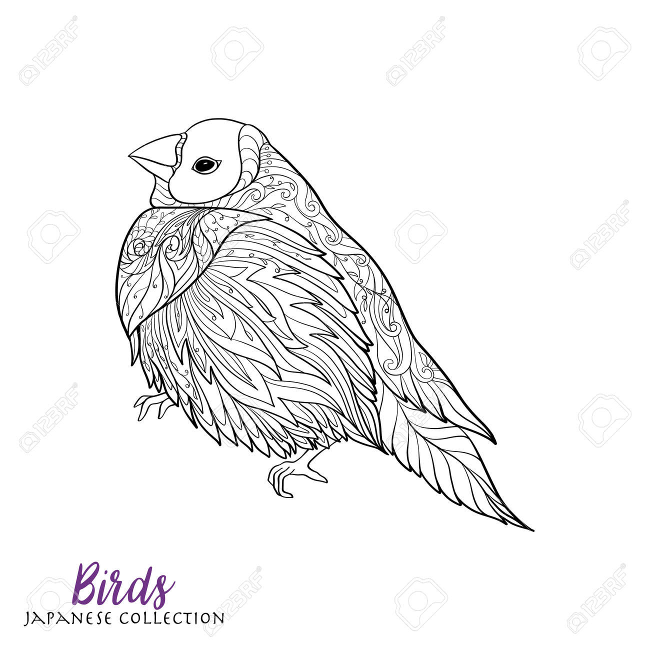 Japanese Birds Stock Line Vector Illustration Coloring Book For Adult Outline Drawing