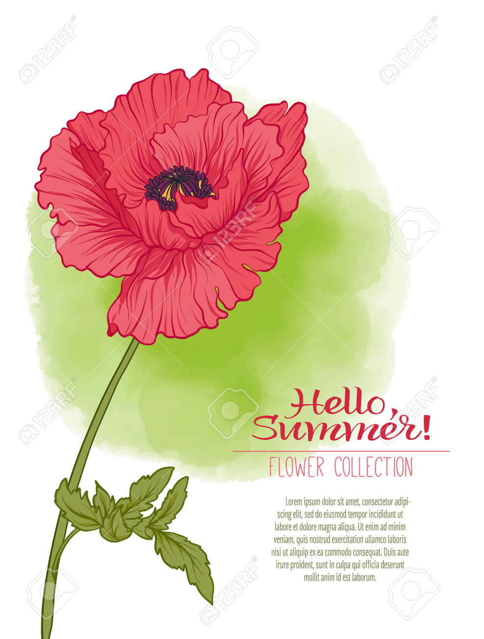 A Poppy Flower On A Green Watercolor Background The Flowers