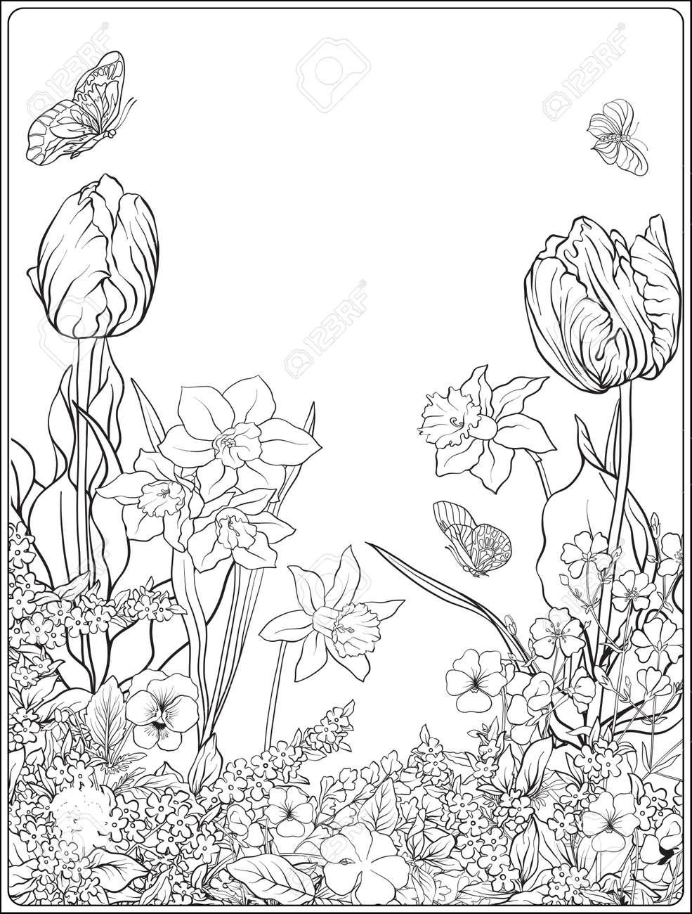 Zusammensetzung Mit Fruhlingsblumen Tulpen Narzissen Veilchen