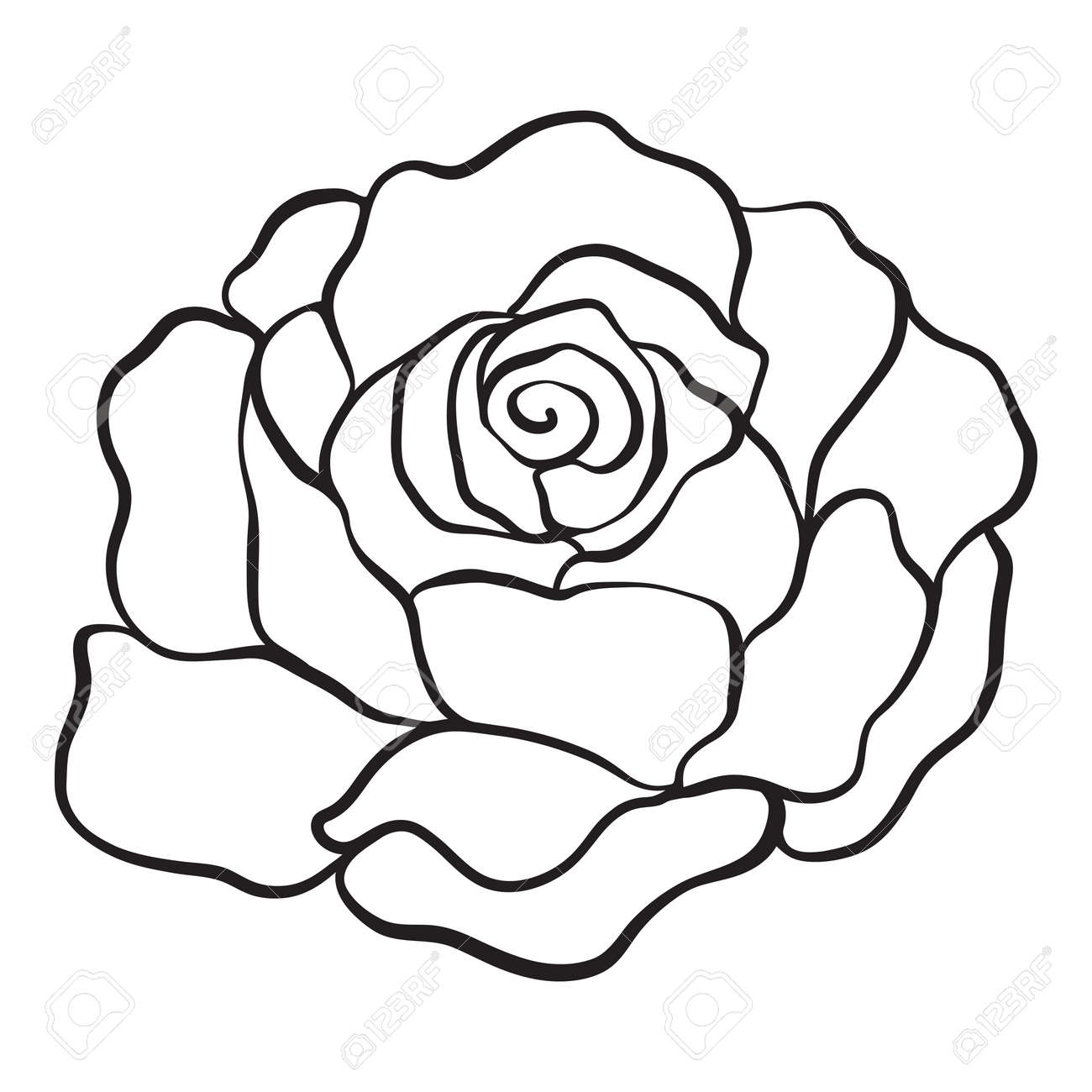 Isolated rose outline drawing stock vector illustration stock vector 85718150
