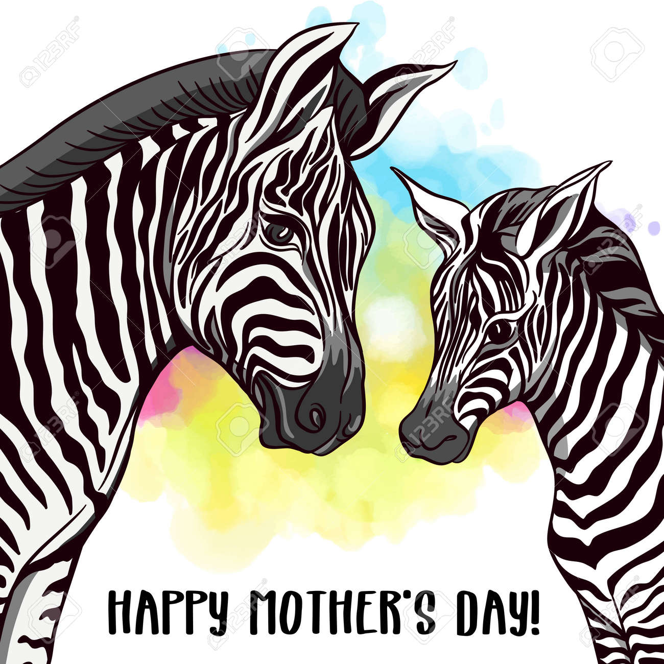 Background With Zebra Mother And Her Child On Rainbow Watercolor