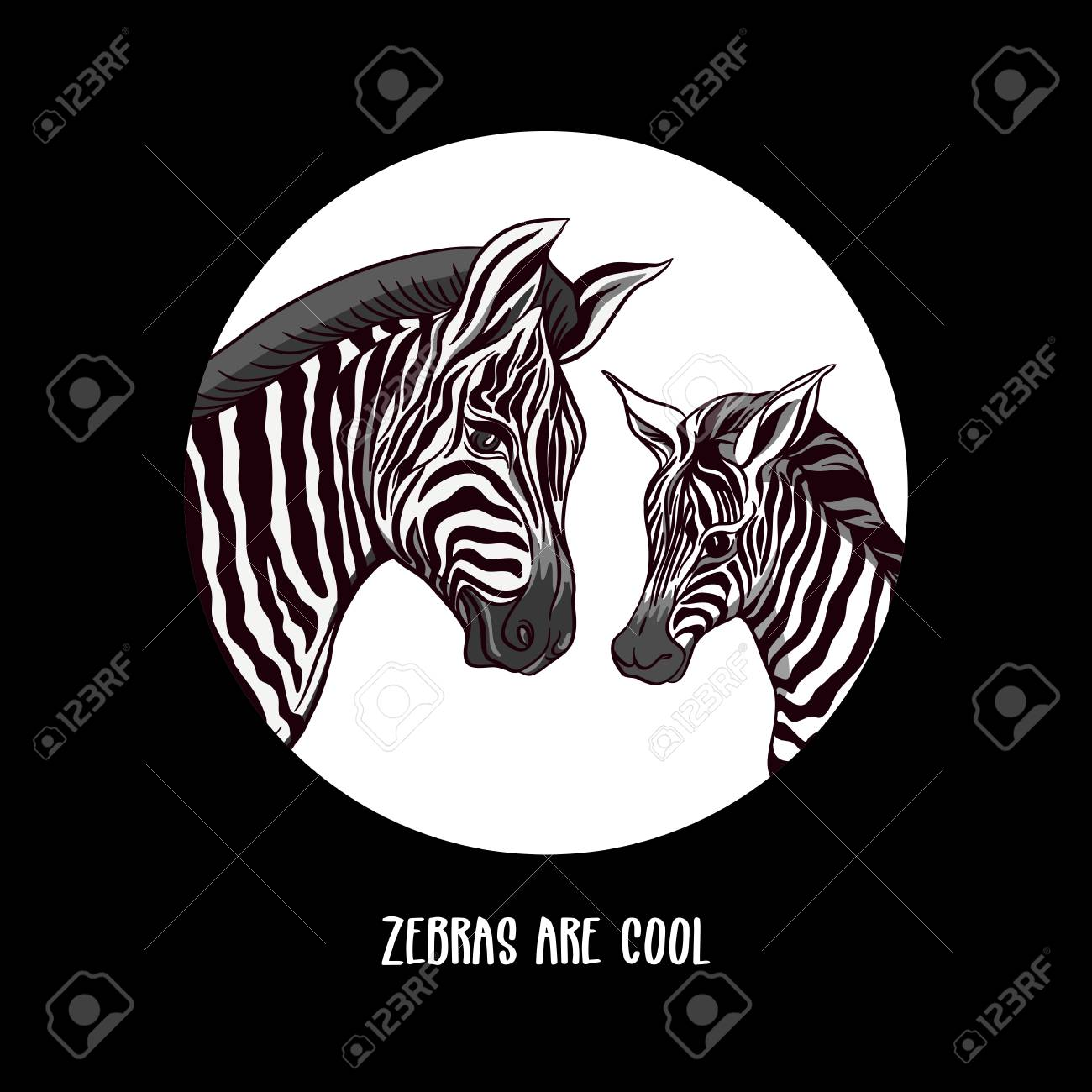 Background With Zebra Mother And Her Child Good For Greeting Card