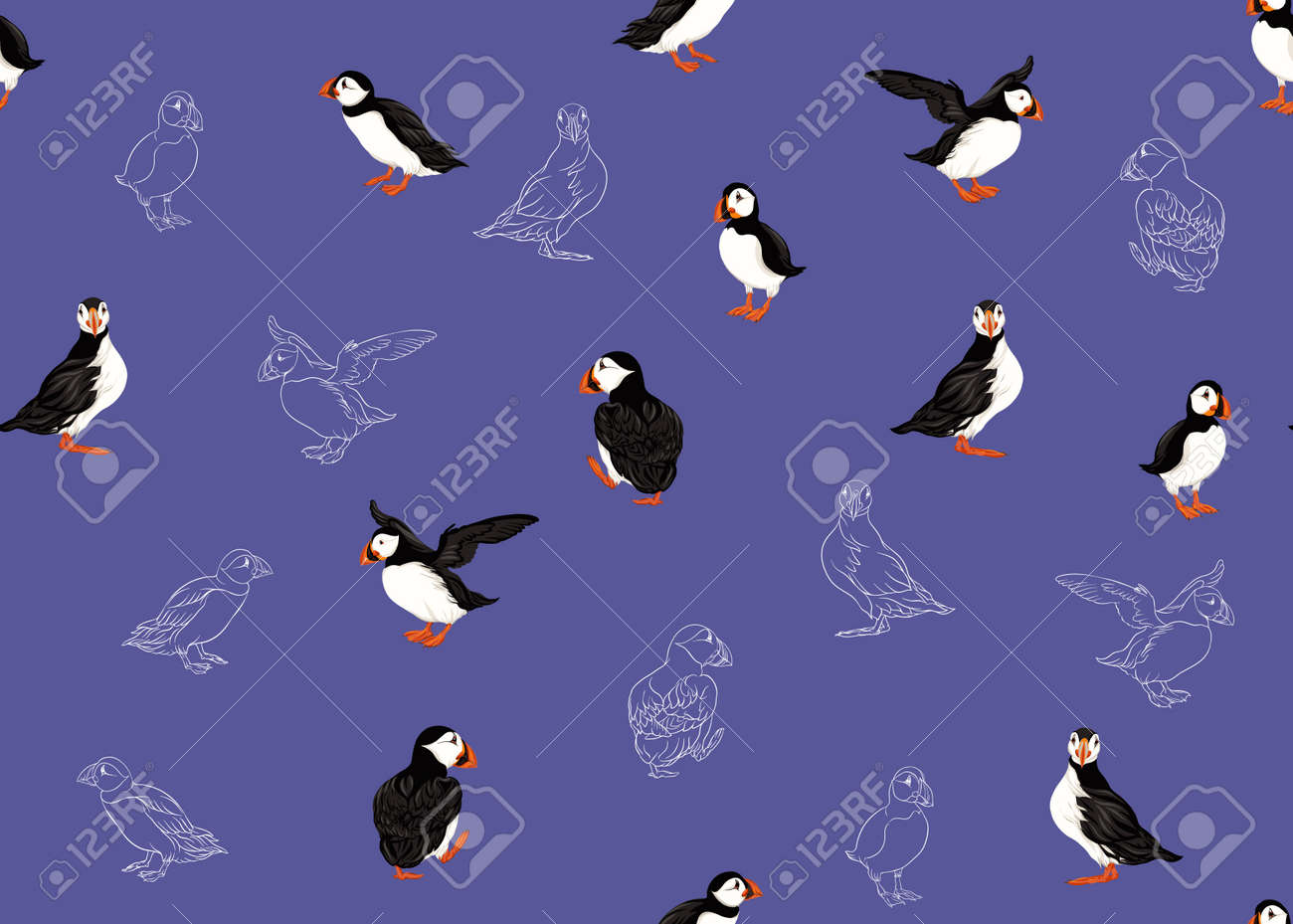 Arctic Puffins seamless pattern. Colored and outline design. Vector illustration. - 132748057