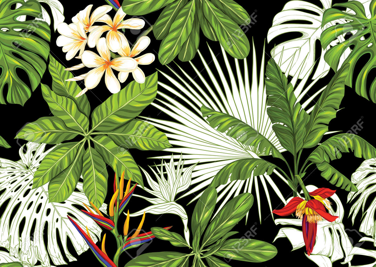 Tropical plants and flowers. Seamless pattern, background. Colored and outline design. Vector illustration isolated on black background - 133286300