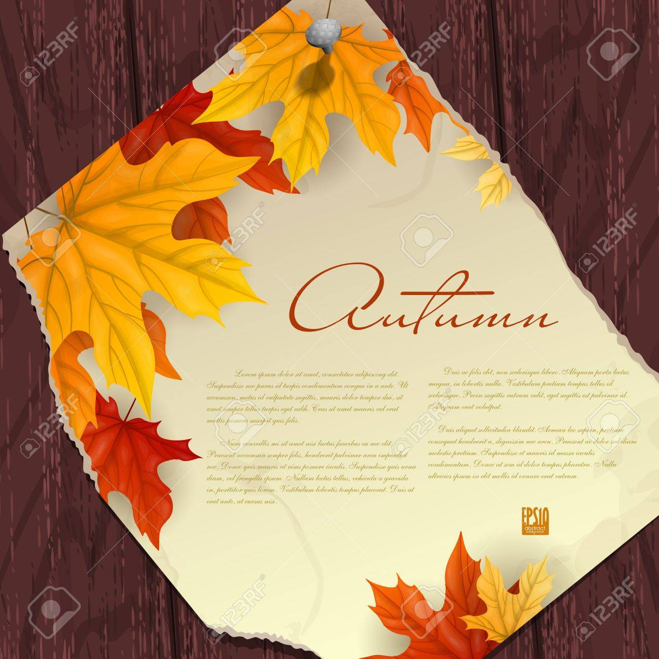 Autumn background with leaves.  Vector illustration. Stock Vector - 16977211