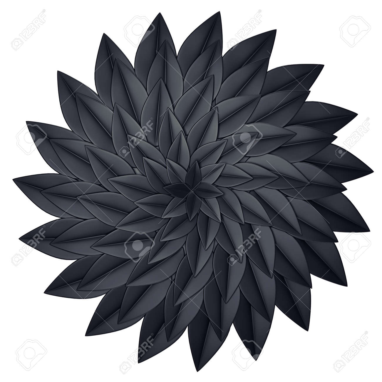 Black Paper Flower On A White Background 3d Render Stock Photo