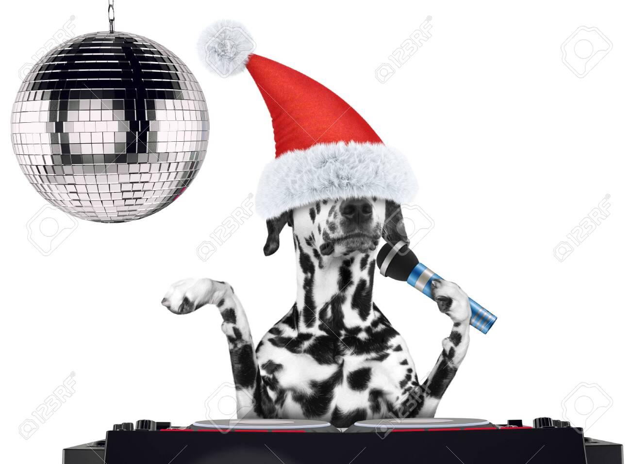 Karaoke Christmas Musical.Dalmatian Dog In Christmas Hats Singing With Microphone A Karaoke