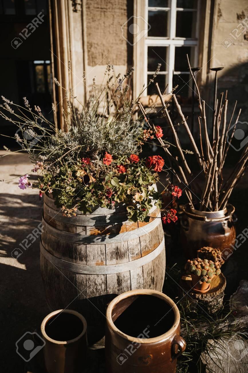 Plants In The Garden In A Wine Container Fotos Retratos Imagenes Y Fotografia De Archivo Libres De Derecho Image 146575909