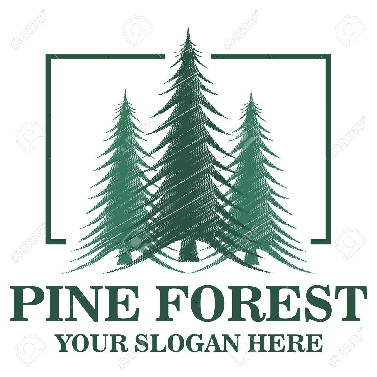 pine forest logo template royalty free cliparts vectors and stock