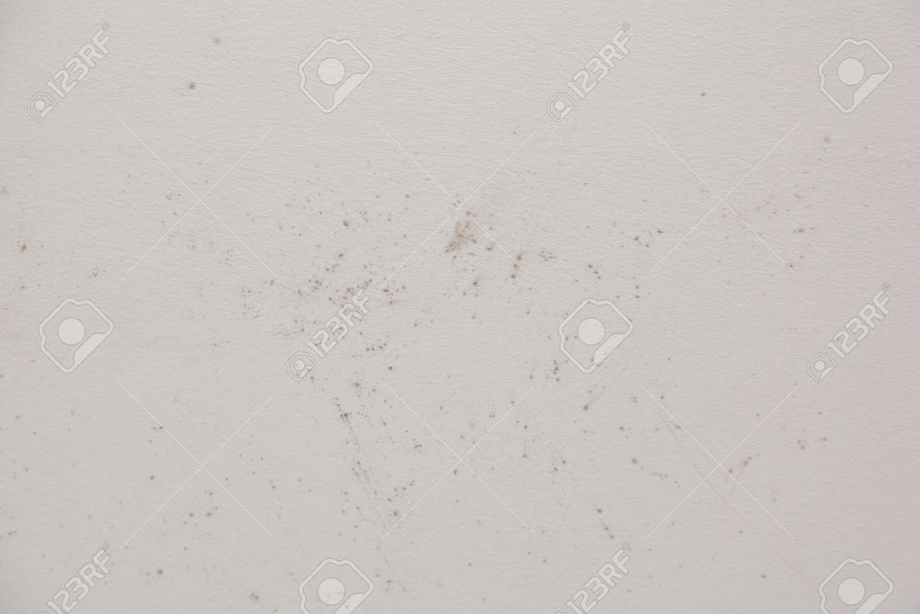 Mold In The Bathroom Shower On The Ceiling And Tiles. Stock Photo ...