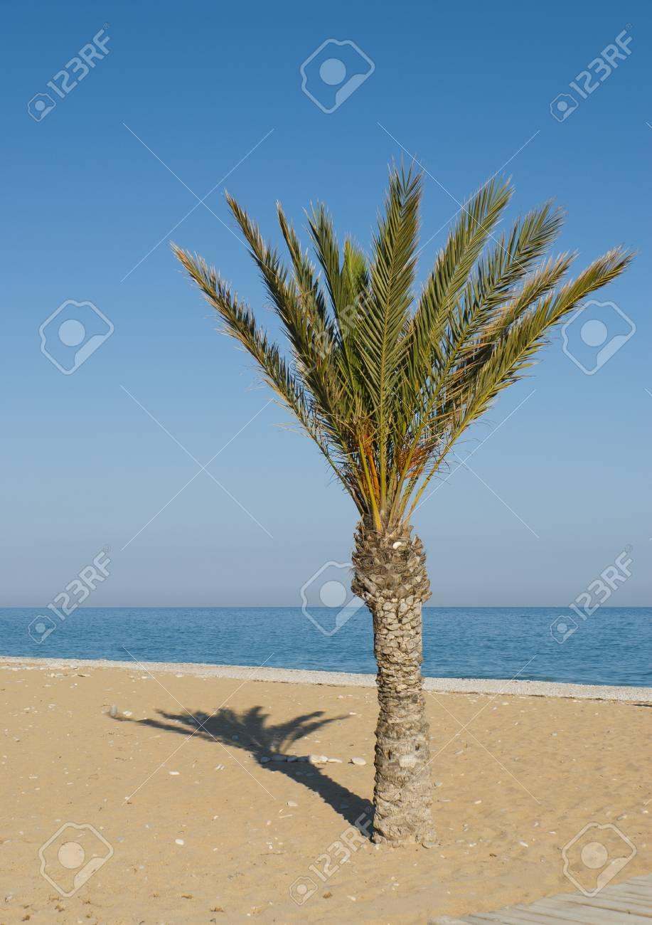 Peaceful Mediterranean beach ready for the summertime Stock Photo - 9625904