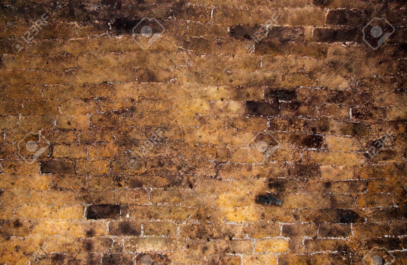 Cave A Vin En Brique mur de briques à l'intérieur d'une ancienne cave à vin comme toile