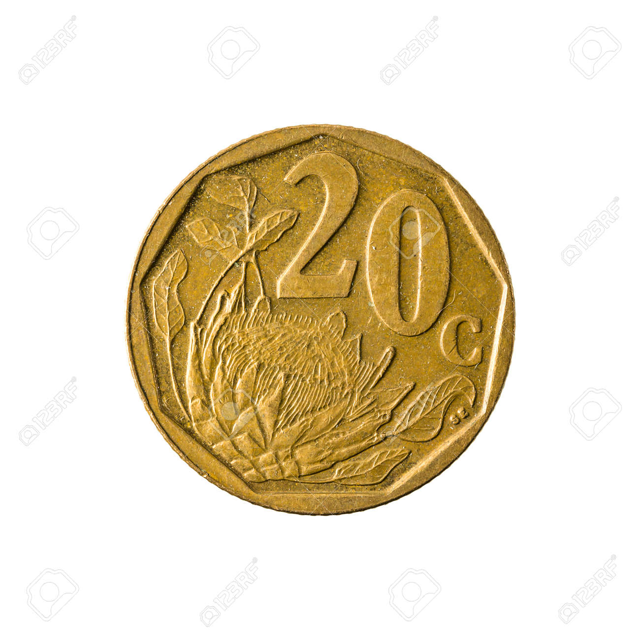 20 Südafrikanische Cent Münze 2008 Avers Isoliert Auf Weißem