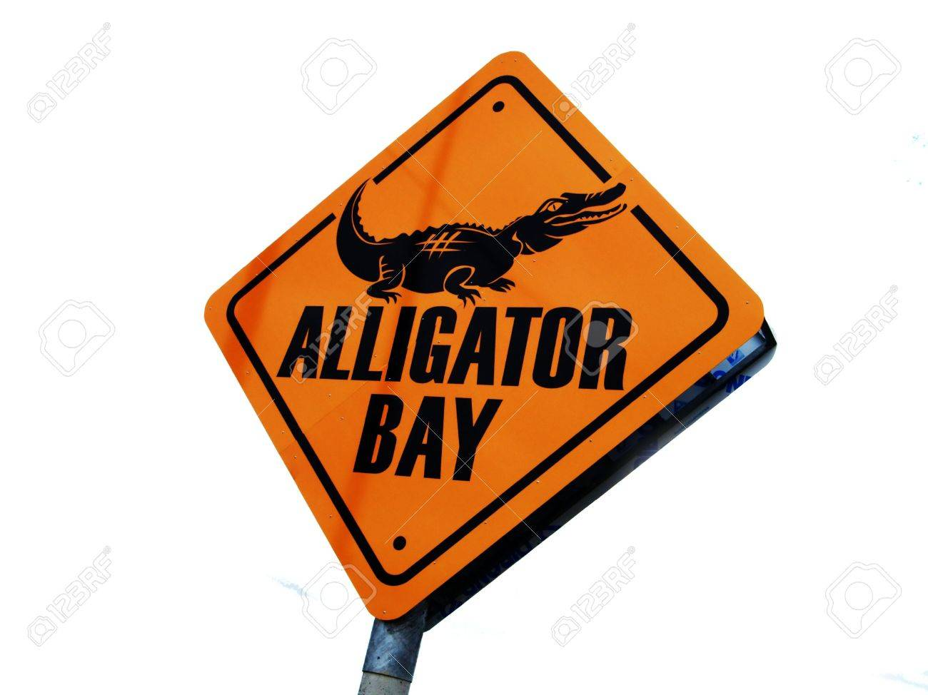 warning sign alligator bay stock photo picture and royalty free