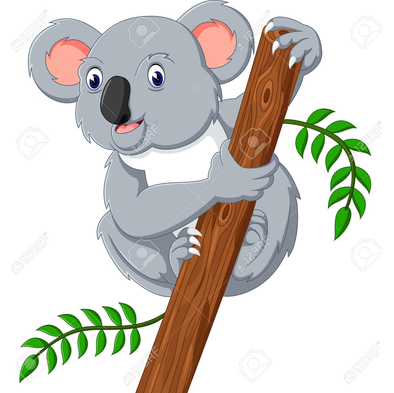 Cute koala holding tree - 50992546