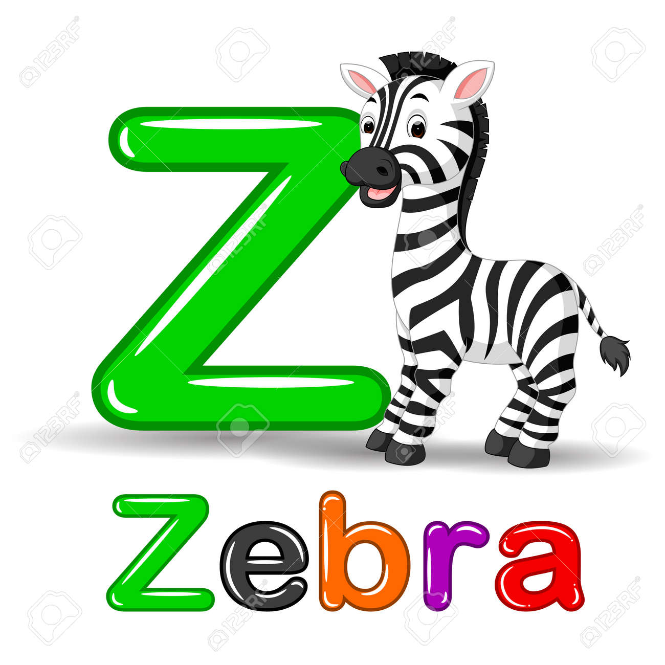 Vector   Zebra Animal And Letter Z For Kids Abc Education In Preschool.
