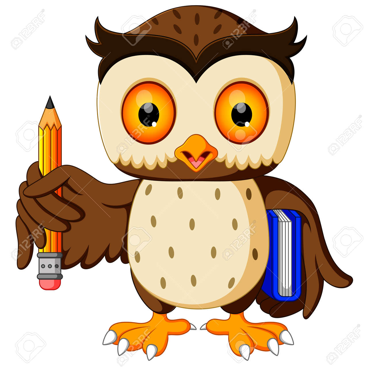 owl carrying book and pencil - 80900791