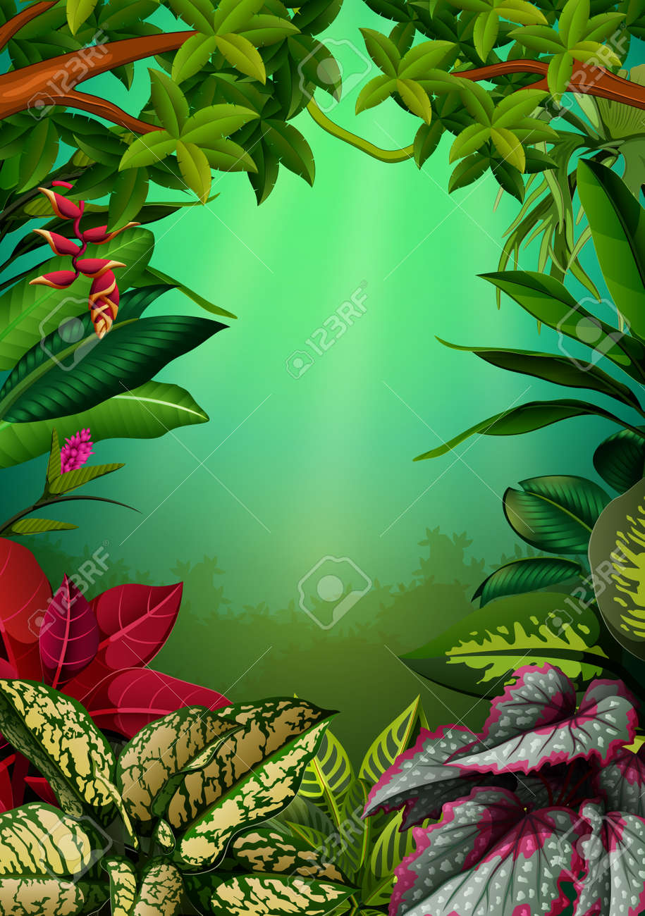 The Beautiful Walpaper With The Aglomena Leaves And Trees Stock