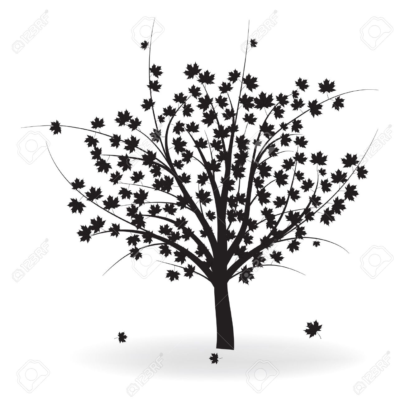 Silhouette of beautiful autumn tree for your design. Stock Vector - 9077818