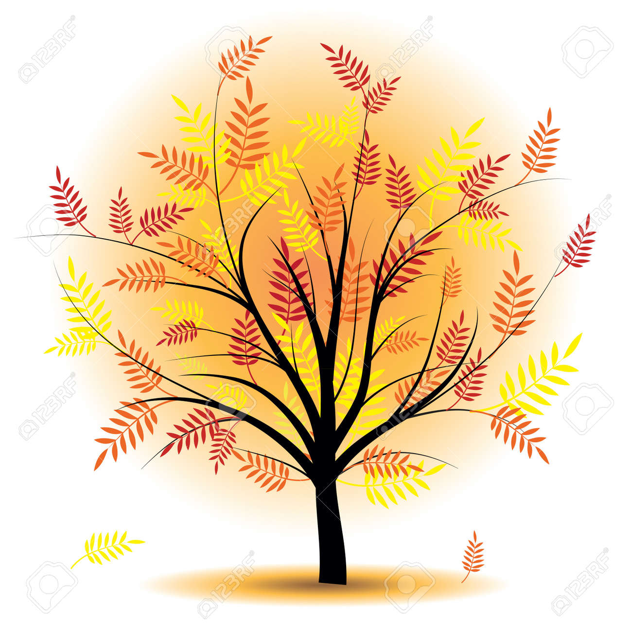 Beautiful autumn tree. Design element. Fall illustration. Stock Vector - 10014589