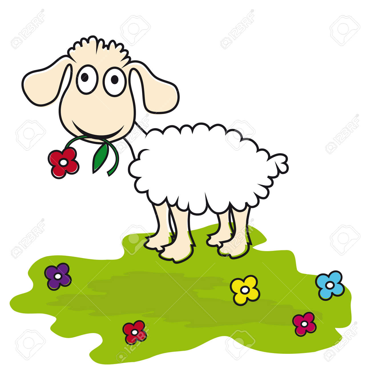 ewe images u0026 stock pictures royalty free ewe photos and stock