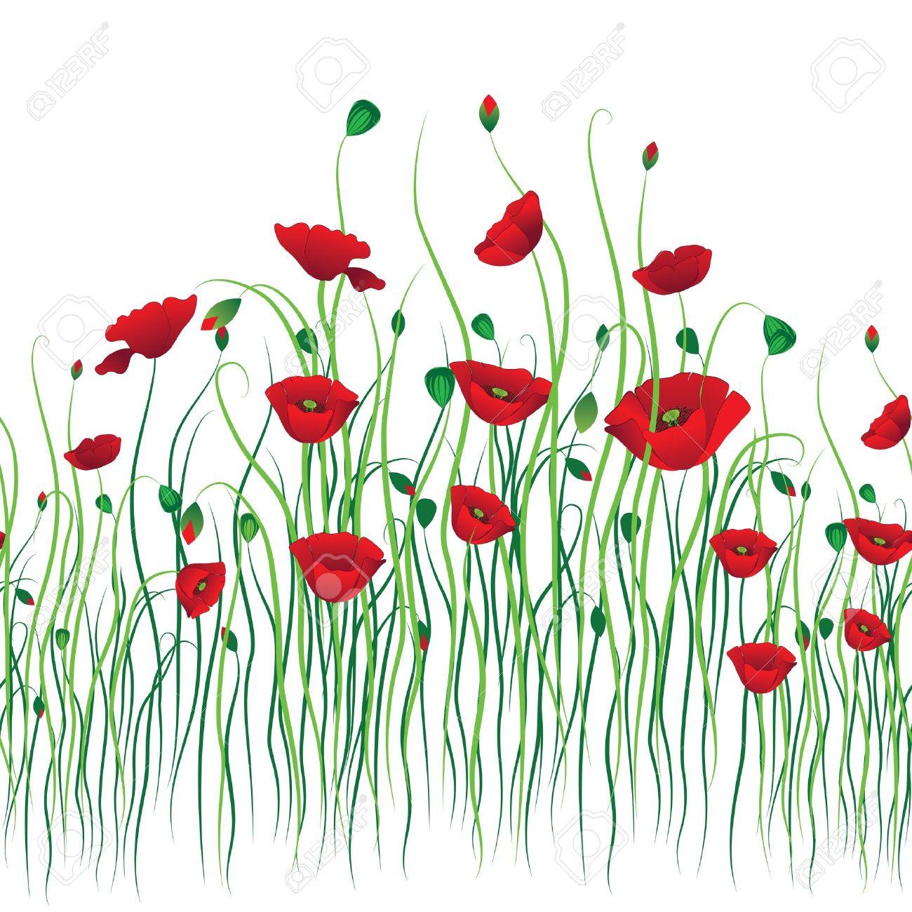 Poppy fond transparent. Vecteur fleur. Art motif de bordure. Floral design  vintage. Joli fond d\u0027écran mignon. Féminine en filigrane