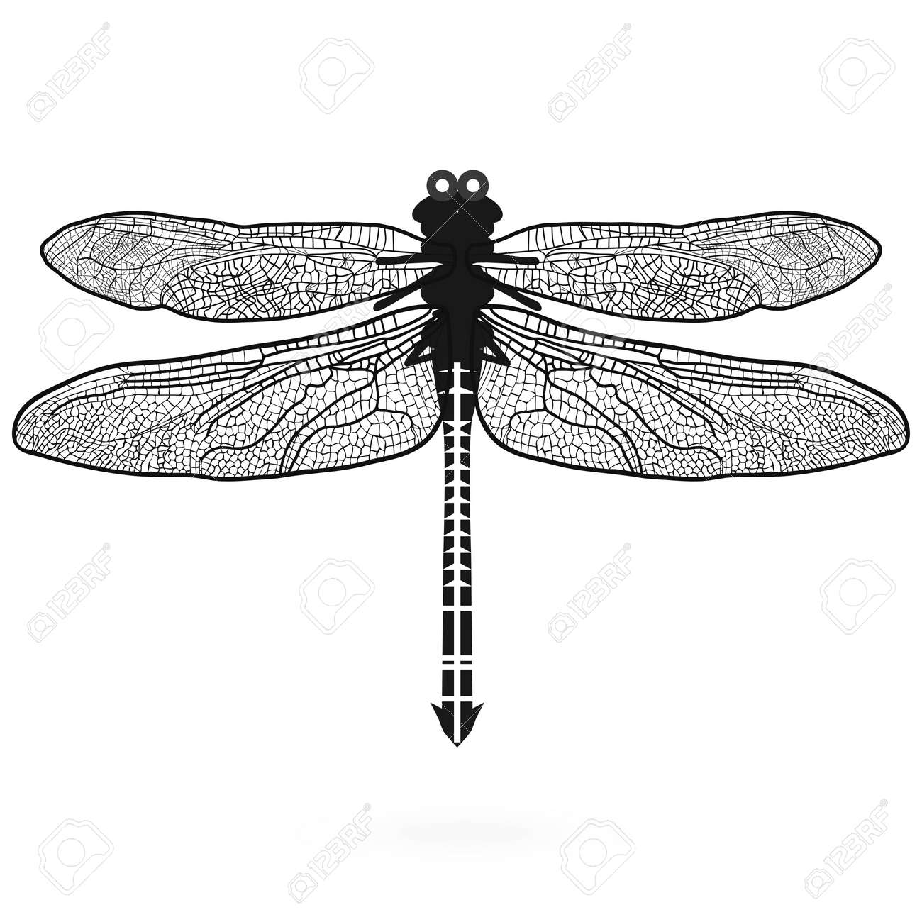 Dragonfly isolated high quality illustration sign icon design dragonfly isolated high quality illustration sign icon design sketch summer vintage logo symbol stock vector biocorpaavc