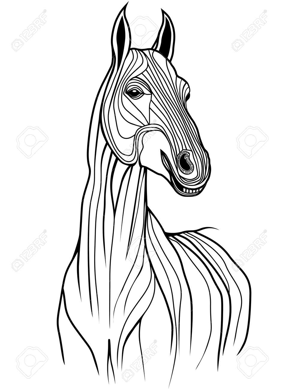 Horse Head Animal Illustration For T Shirt Sketch Tattoo Design Royalty Free Cliparts Vectors And Stock Illustration Image 19584095