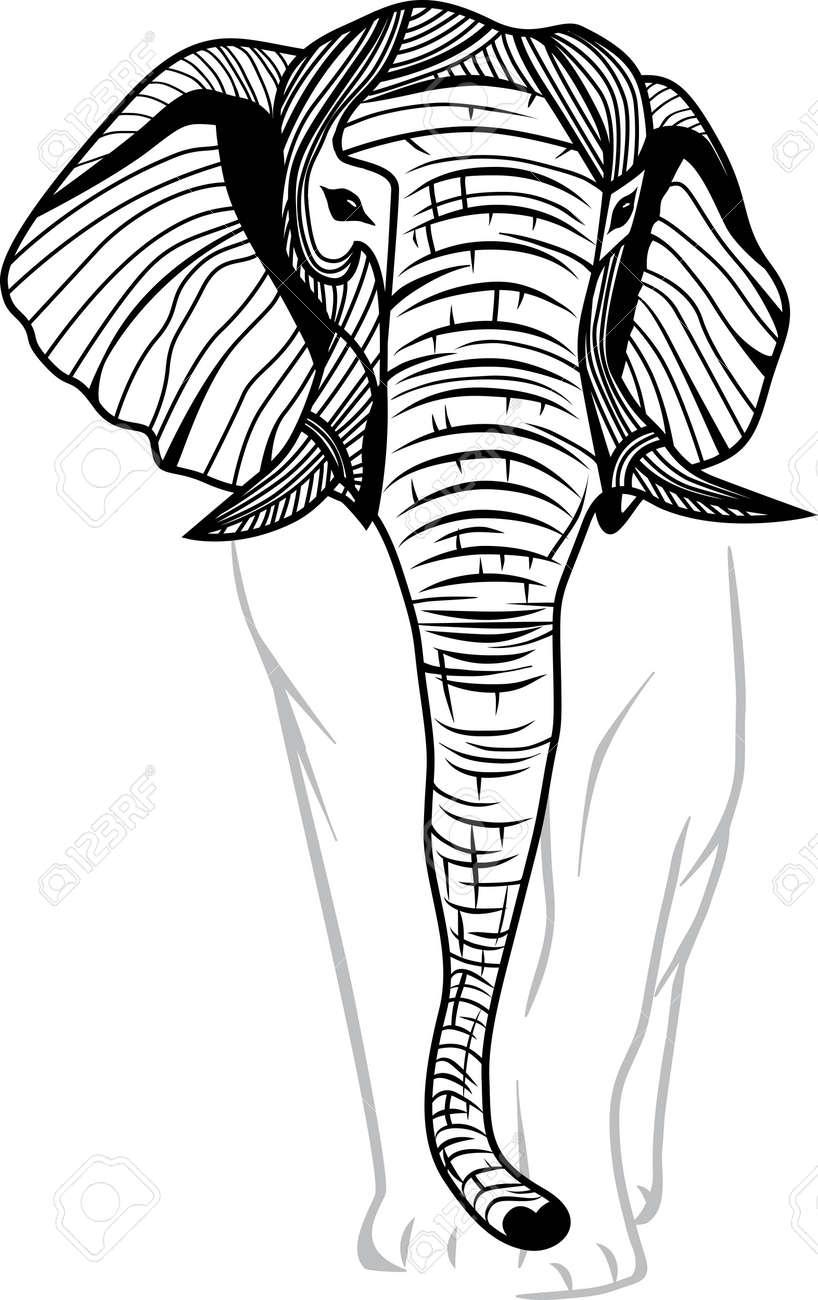 Elephant Head For Mascot Or Emblem Design, Animal Illustration ...