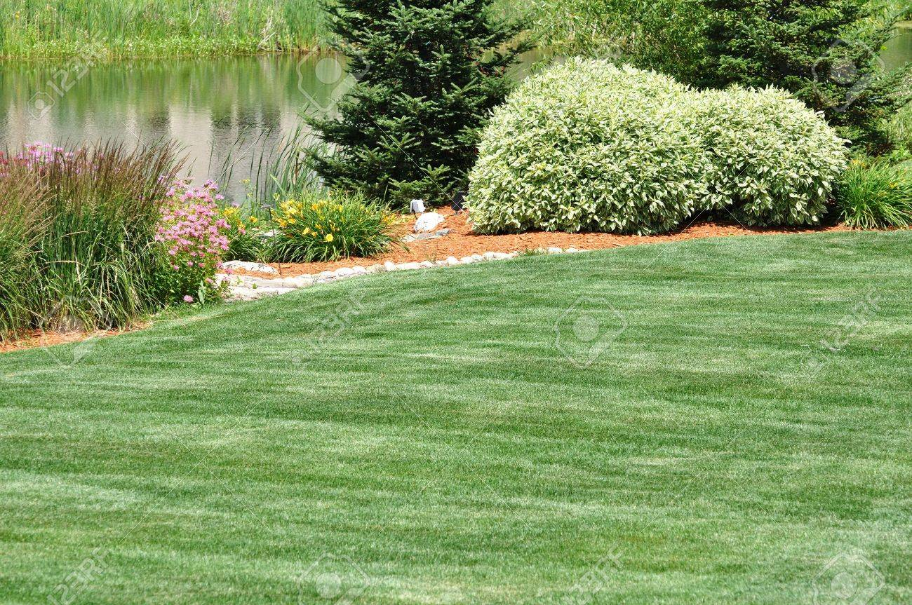 backyard landscaping with lawn and pond stock photo picture and