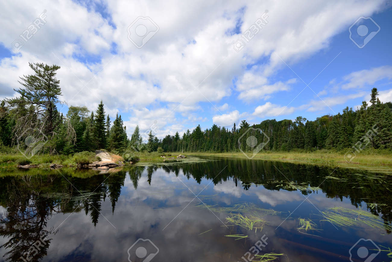 Reflections of Clouds on a Wilderness River Stock Photo - 51326239