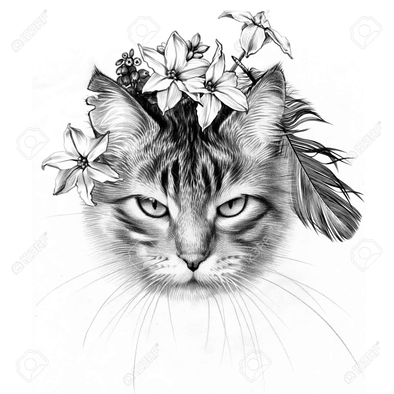 Cute march cat pencil drawing spring flowers