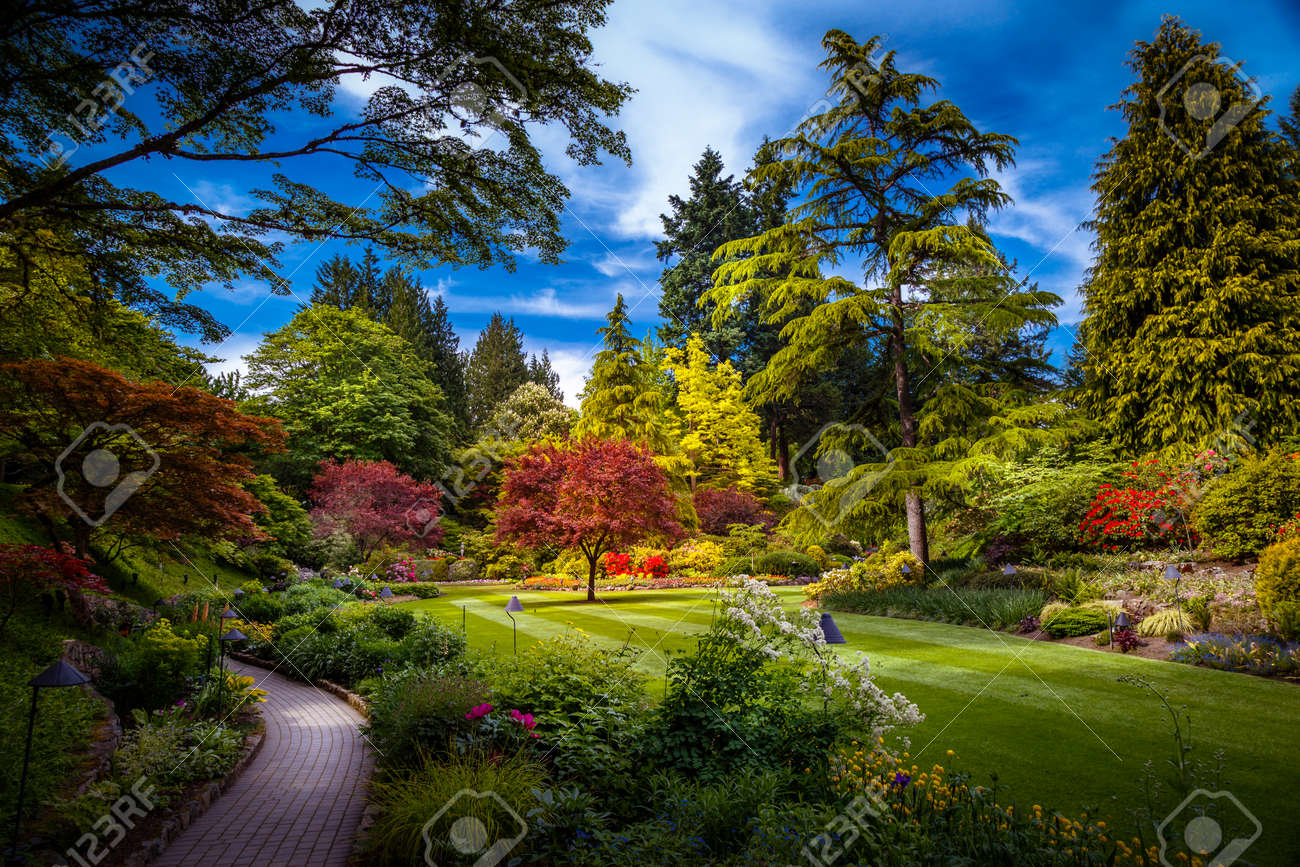Butchart gardens in victoria vancouver island british columbia butchart gardens in victoria vancouver island british columbia canada stock photo 41226286 thecheapjerseys Image collections