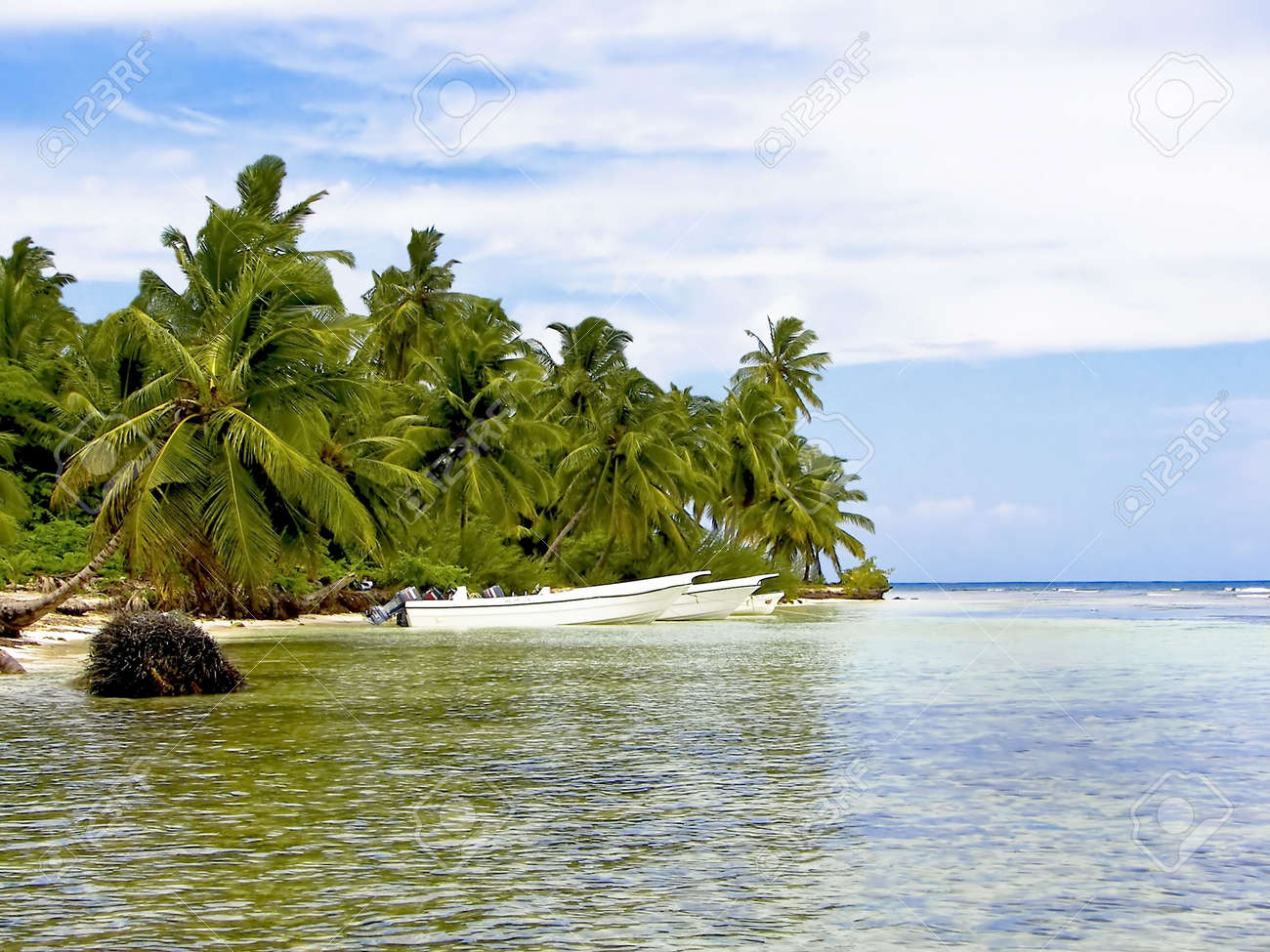 Tropical cove surrounded with palm trees.  Beautiful clear water with boats parked by shoreline. Stock Photo - 3086549