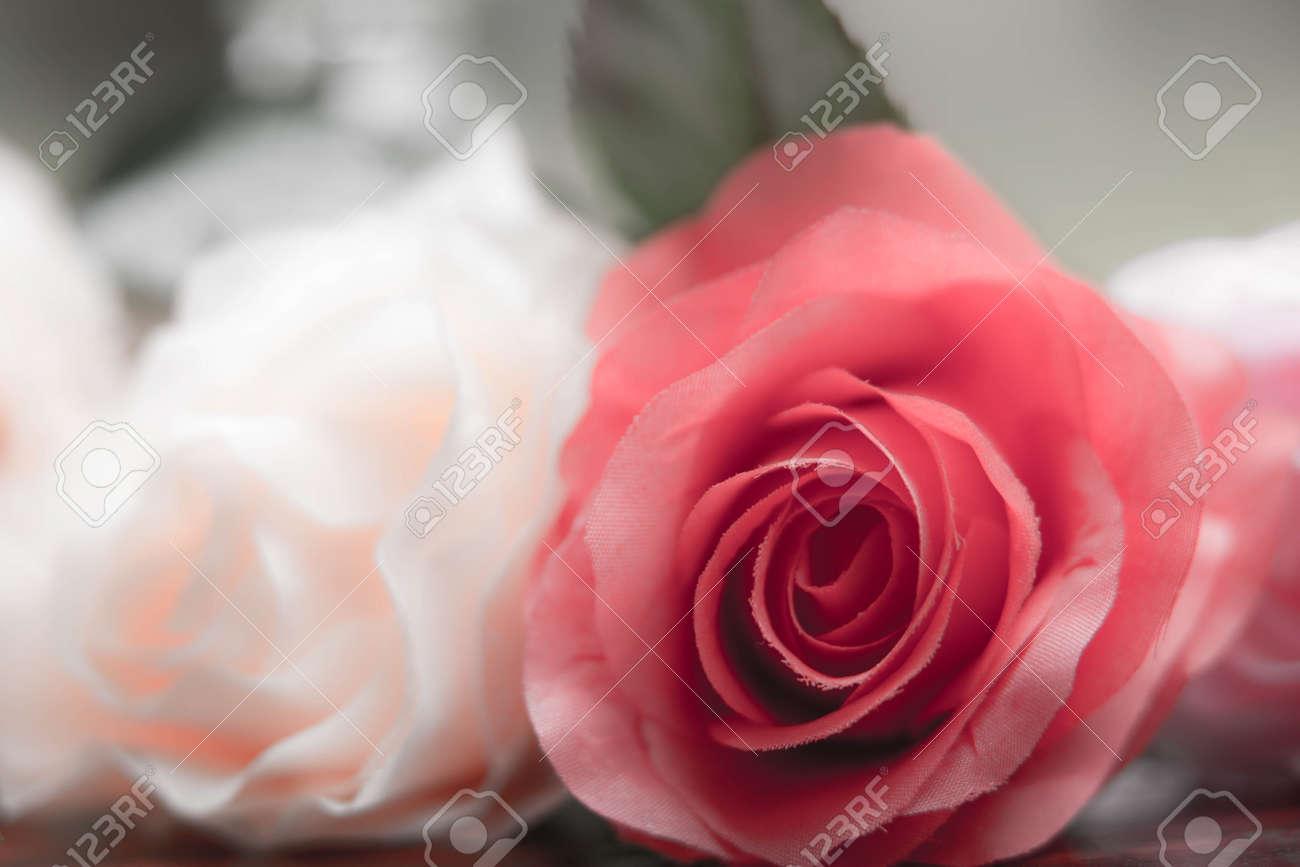 Roses made of fabricbeautiful flowers royalty free stok fotoraf roses made of fabricbeautiful flowers stok fotoraf 81551236 izmirmasajfo