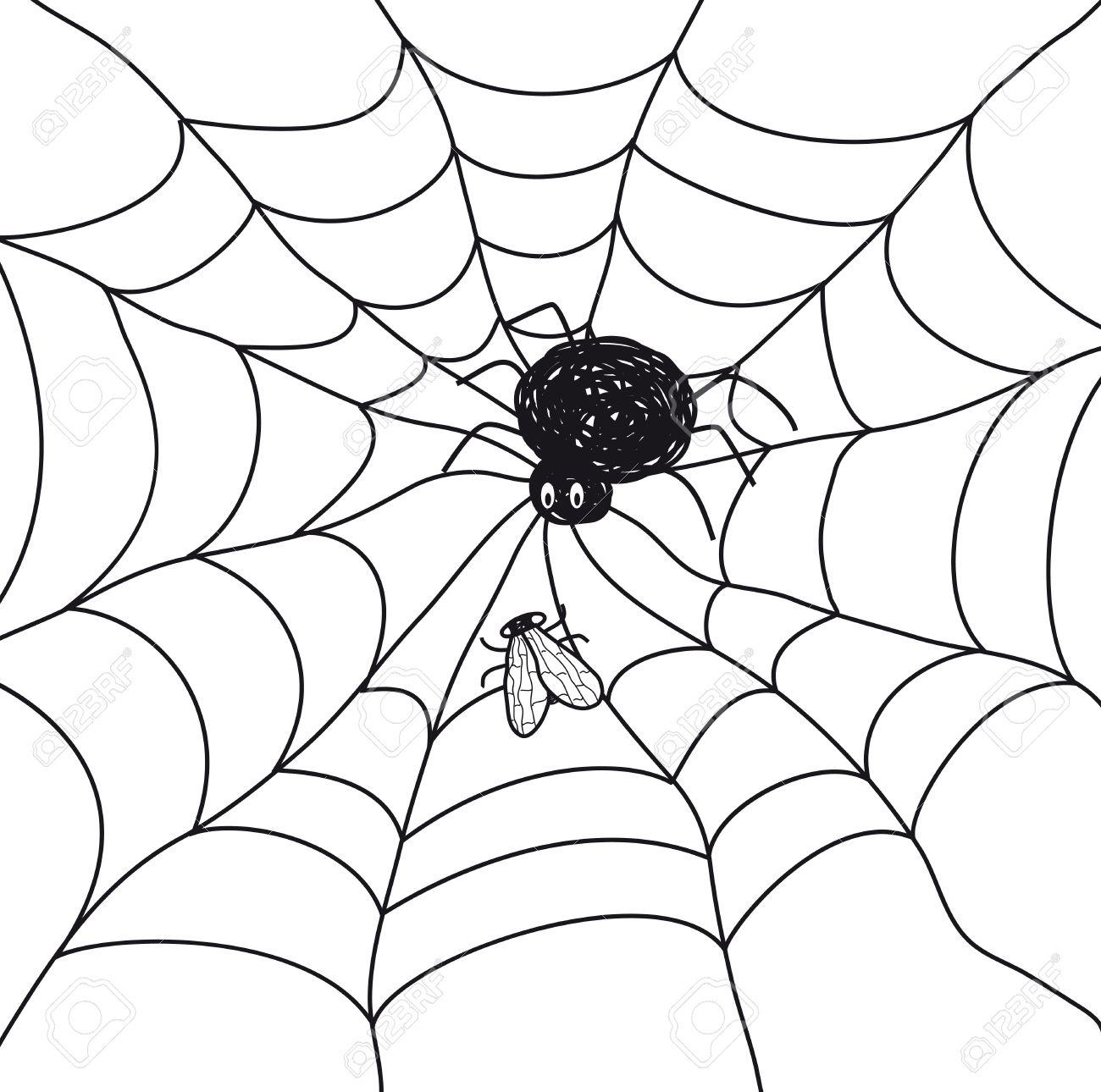 Araña Con Una Mosca En Una Tela Ilustración Sobre Fondo Blanco ...