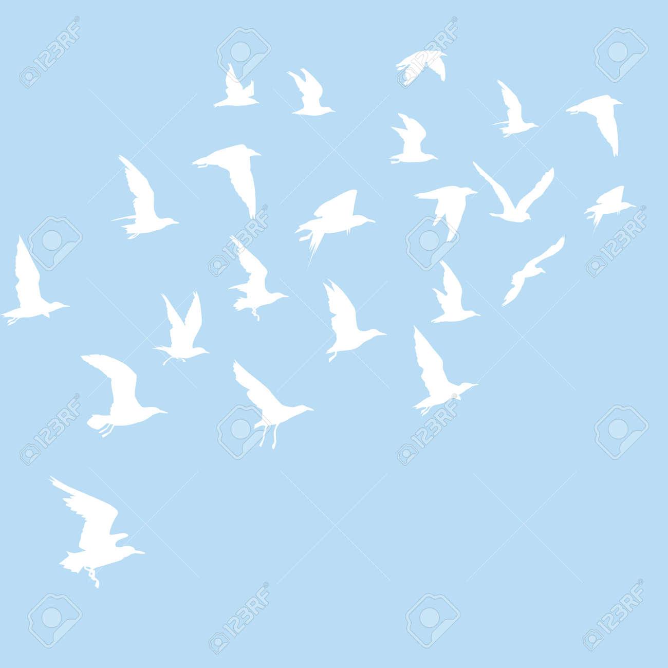 飛ぶ鳥の白のシルエット