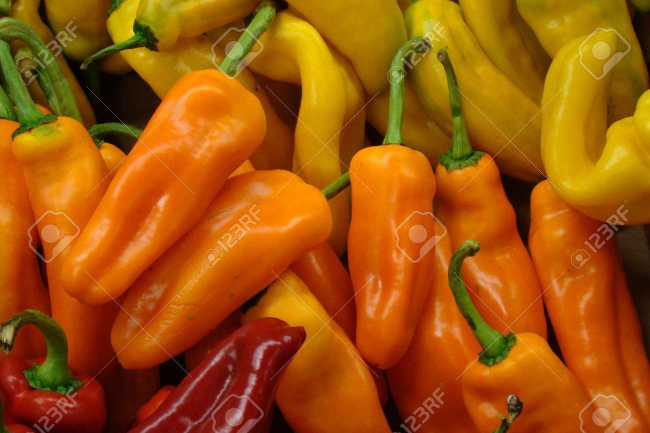 fresh organic hot peppers Stock Photo - 9868302