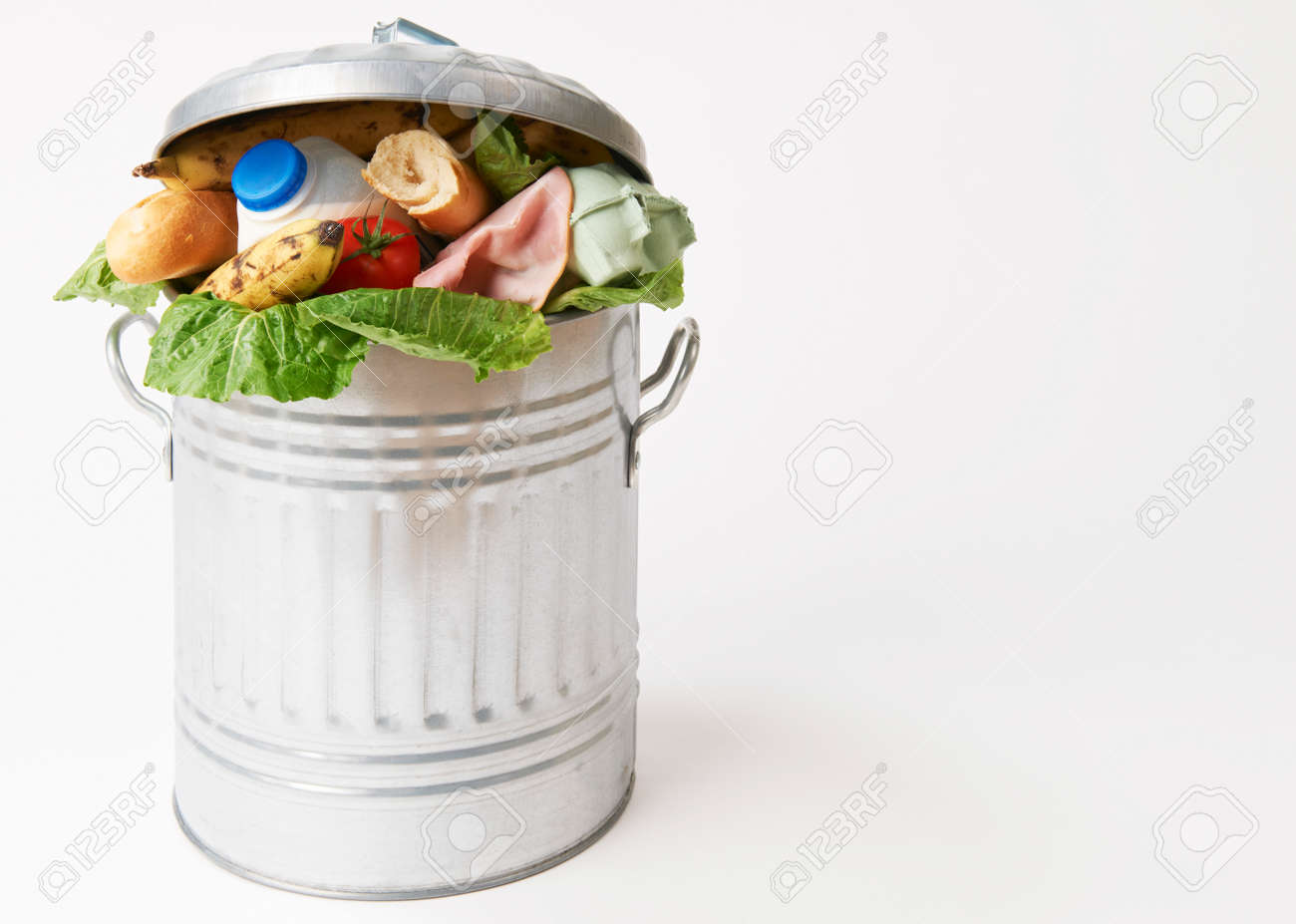 Fresh Food In Garbage Can To Illustrate Waste Stock Photo - 49371532