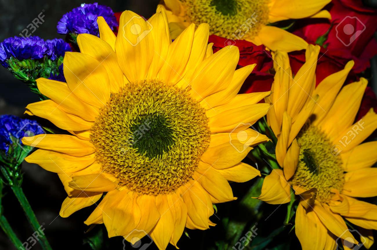 bouquet de tournesol jaune vif. belles fleurs pour un événement