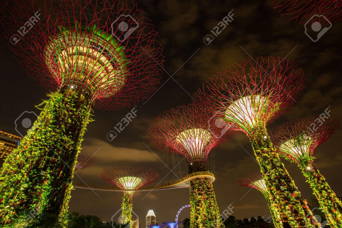 marina bay singapore march 16 2015 big tree light show night